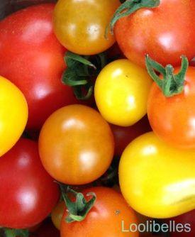 rays-tomatoes-wm