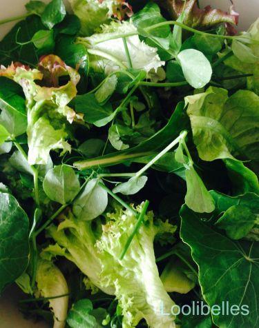 salad-1-wmv2